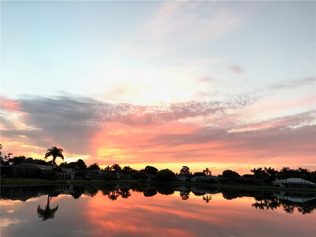 Drinking coffee and watching the sunrise from Lanai - Single Family Home for sale at 5629 Country Lakes Dr, Sarasota, FL 34243 - MLS Number is A4415511
