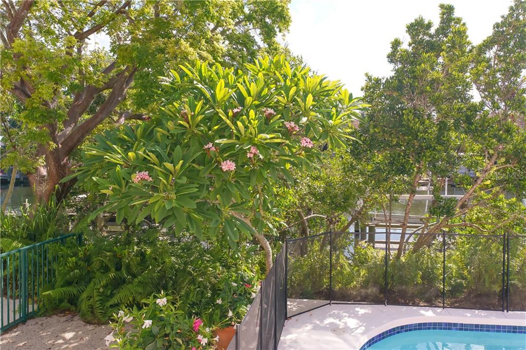 Lush Tropical Landscaping including a Frangipani tree. (Plumeria) - Single Family Home for sale at 5143 Oxford Dr, Sarasota, FL 34242 - MLS Number is A4434790