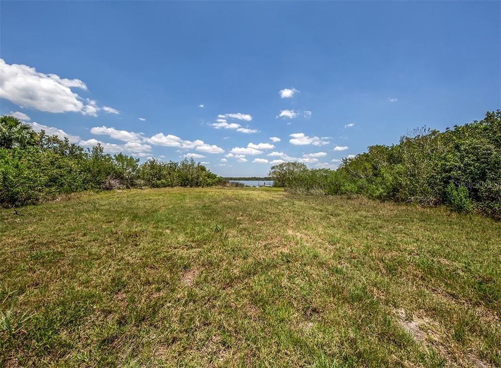 View of Myakka River from clearing - Vacant Land for sale at 9500 Myakka Dr, Venice, FL 34293 - MLS Number is N6111090