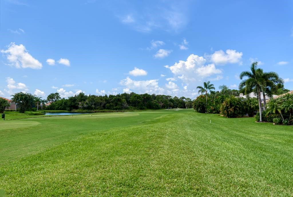 View of par 3 5th hole from the rear of the home, outside of the lanai - Single Family Home for sale at 601 Cockatoo Cir, Venice, FL 34285 - MLS Number is N6111658