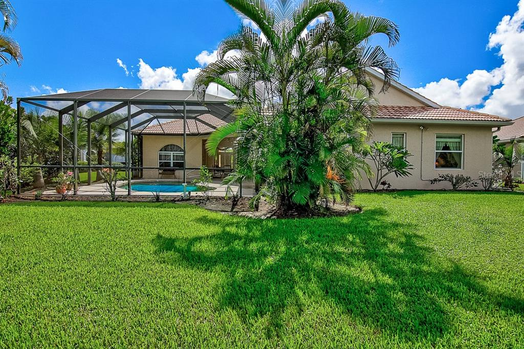 Rear exterior - Single Family Home for sale at 1031 Scherer Way, Osprey, FL 34229 - MLS Number is N6111839