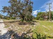 Retained tree - Vacant Land for sale at 230 Nassau St S, Venice, FL 34285 - MLS Number is N6111555