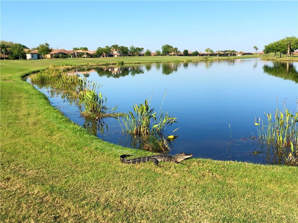Condo for sale at 8402 Grand Estuary Trl #102, Bradenton, FL 34212 - MLS Number is A4420192